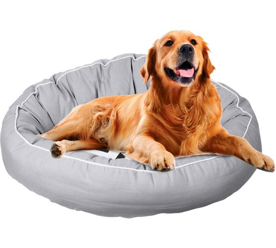purchase a dog bed
